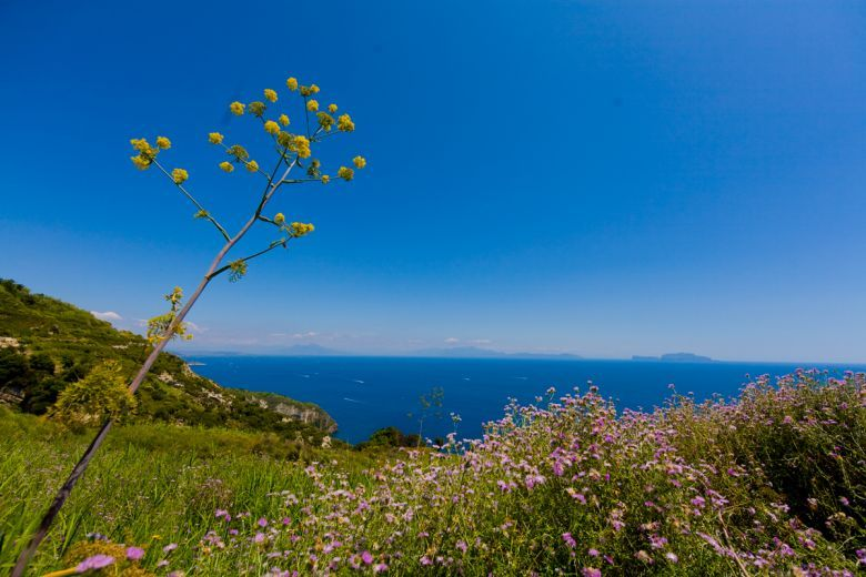 Week-End di Primavera ad Ischia